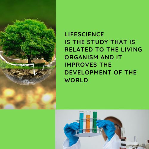 Life Science Assignment Help