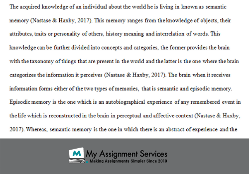 Neuroscience assignment answers
