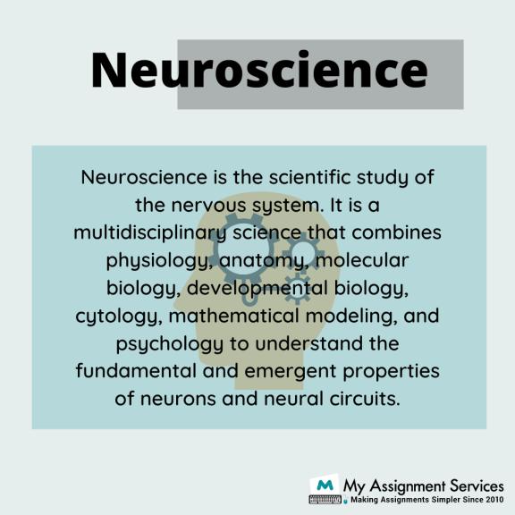 Neuroscience assignment help